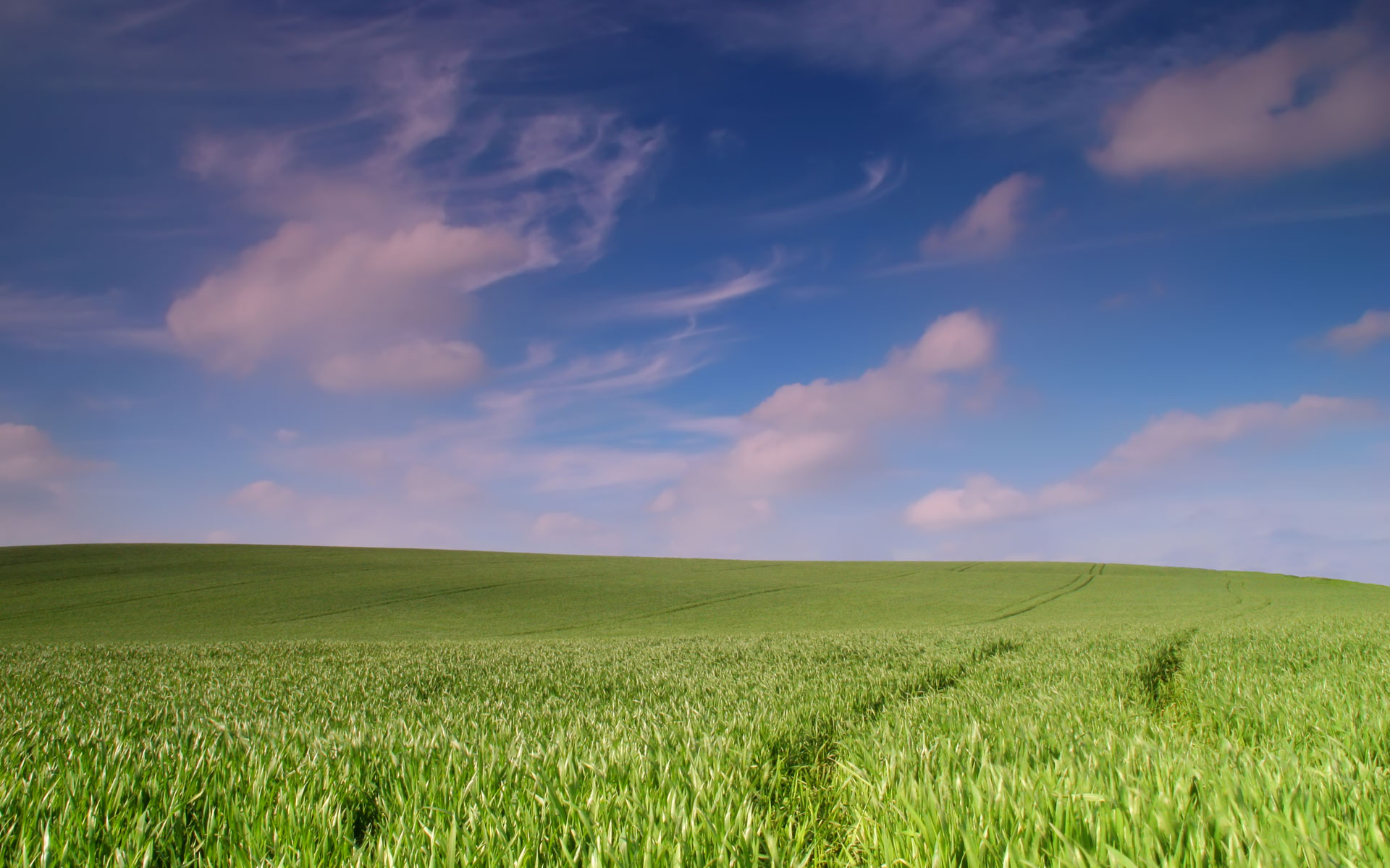 desktop_field_sky_swirly_wheat_landscapes_background_wallpaper_578.jpg